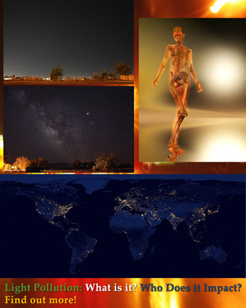 What and Who is impacted by light pollution
