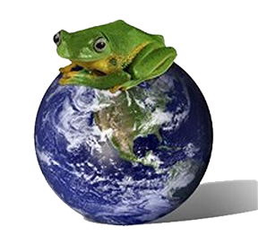 happy frog atop clean globe