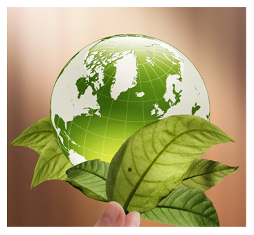clean globe environmental protection